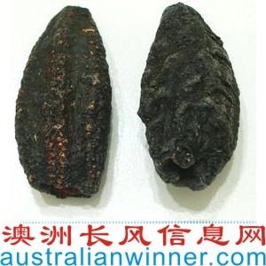 干海参,澳洲原产,Australian Dried Sea Cucumber